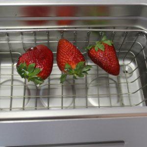 ultraschall_erdbeeren